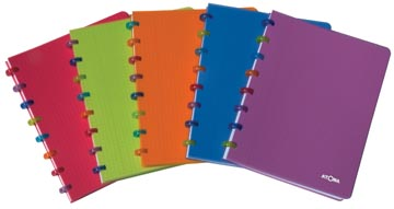 Atoma schrift Tutti Fruit Rings ft 16,5 x 21 cm, geruit 5 mm
